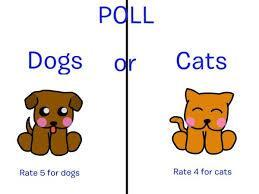 Dogs Or Cats?