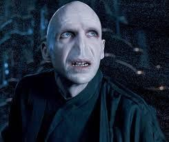 WHICH WELL KNOWN BRITISH ACTOR PLAYED VOLDEMORT WHO FIRST APPEARED IN HARRY POTTER AND THE GOBLET OF FIRE PLAYING A VERY EVIL DARK WIZARD WHO IS DETERMINED TO HUNT DOWN HARRY POTTER AND KILL HIM?