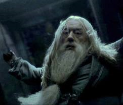 Who kills Professor Dumbledore?