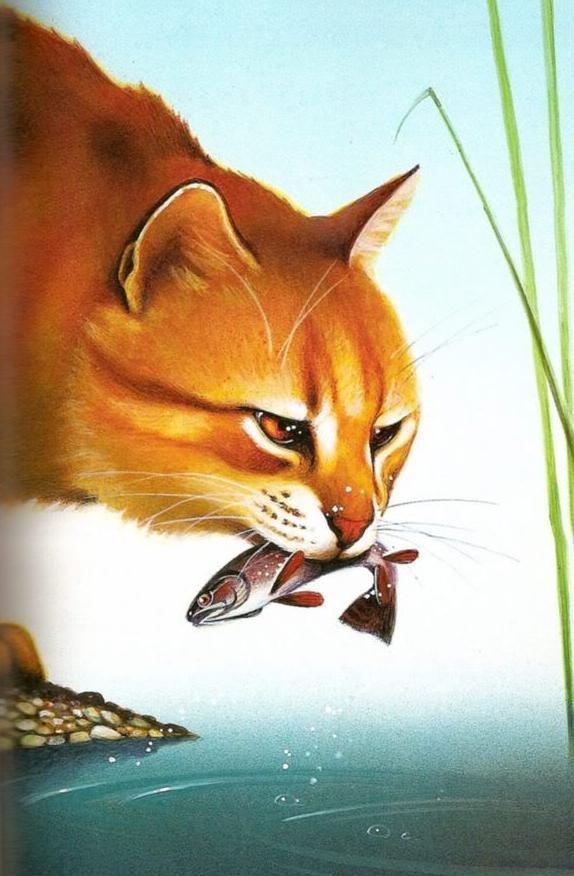 A cat from a different Clan is stealing prey on your territory!What do you do?