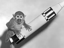What was the the monkey who went into space called?