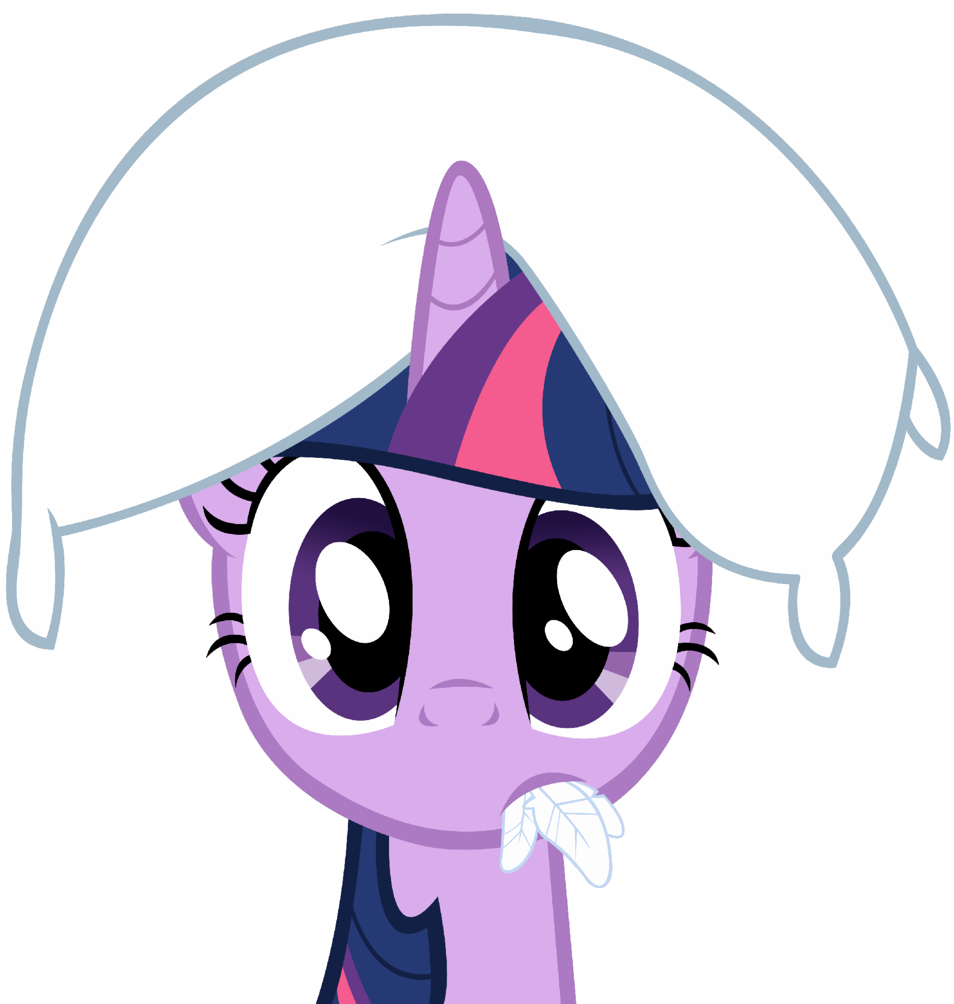 What is Twilight Sparkle's cutie mark?