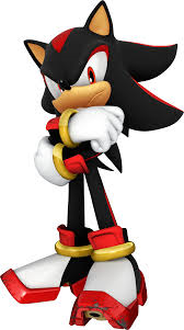 "Your sitting on the couch watching T.V. when Shadow walks into the room. ""Hi __."" he says. ""Hi Shadow!"" you reply. ""The faker asked me to train you to find your special ability. I, of course, agreed."" He says. ""Cool! When do we start?"" you ask. ""Tomorrow, 9:00."" he says."
