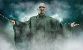 Voldemort's nicknames? Choose 2.