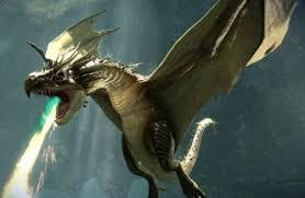 which of the dragons did harry have to collect the golden egg from in the first task of triwizard tournament ?