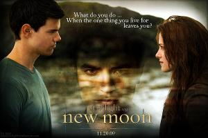 Since Jacob was always warm, what did Bella refer him to?