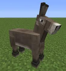 Can Donkeys Wear Armour?