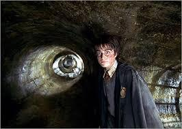 Which type of magical creature comes to Harry Potters rescue in Harry Potter and the Chamber of Secrets?