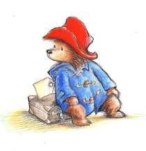 What color wellington boots did Paddington Bear wear ?