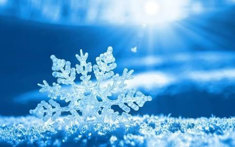 The largest recorded snowflake was 15 inches wide and 8 inches thick