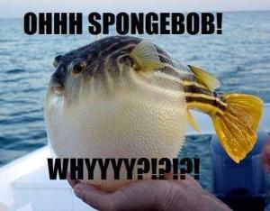 True or false: Mrs. Puff is the only fish on the show.
