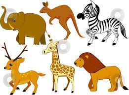 what is your best animal