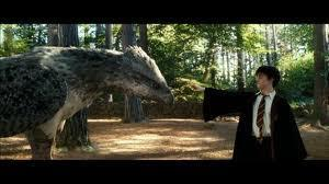 If you had a chance to see any of the magical creatures throughout the entire Harry Potter series which would be the main one you would want to see?