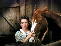 In the film National Velvet who plays velvet?
