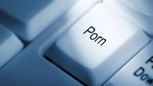 If you ever had, or are planning to watch porn, what type is/was?