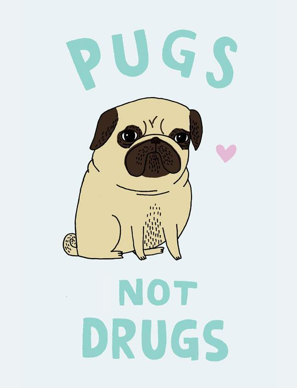 do u like pugs (write yes)
