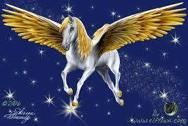 What do you think pegasus are?