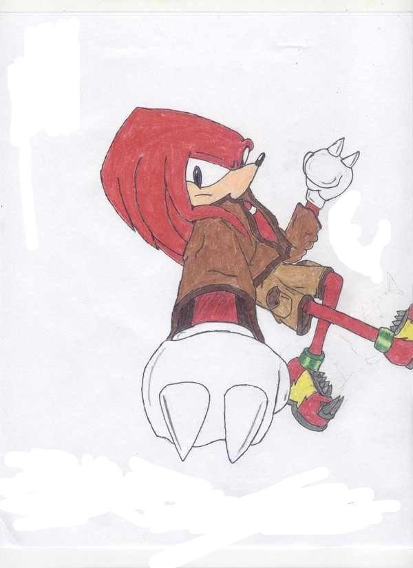 "You saw that girl whisper something in his ear. ""Introduce yourself,"" she said. ""Hi I'm Shadow the Hedgehog."" ""Sorry about in the hallway I'm Alexis the Hedgebat."" ""Who was that girl you were chasing?"" ""Oh yeah her she's Amy Rose, she's super annoying."" You saw a red echidna walk in and a blue hedgehog."