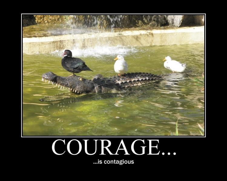 Are you courageous in battle?