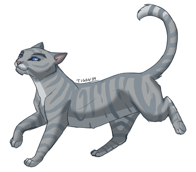 How often do you think of Warrior Cats?