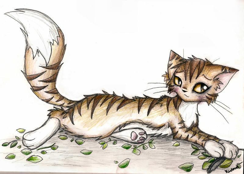Leafpool had kits who were they?