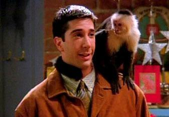 What was the name of Ross's pet monkey?
