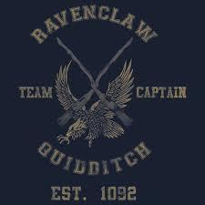 Who was the head of the Ravenclaw Quidditch team in Harry's fourth year?
