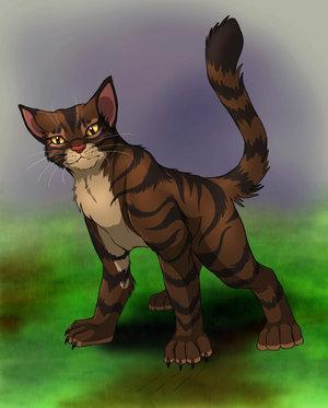 Who is new ShadowClan leader after Nightstar died (Write his leader name, not warrior name.) ?