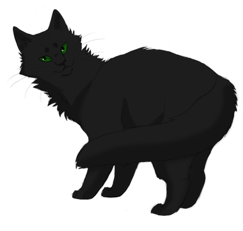 Why did Hollyleaf run away from her clan?