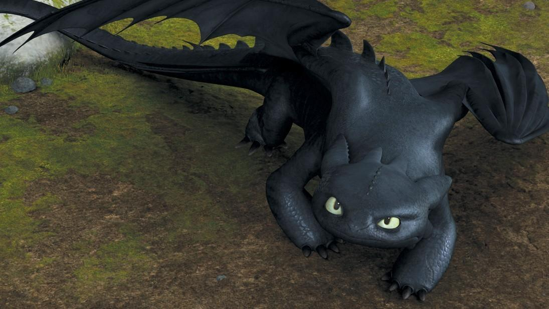 I'm a dragon you rarely see. I am called a Night Fury and was brought down by the thick netting that disabled my flight ability. Who am i?