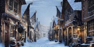 You are able to visit the village of Hogsmeade. Which of these options are you most intent on seeing?
