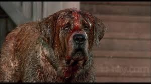 Dun, Dun, Dun! Cujo tries to break into your house. You'll...