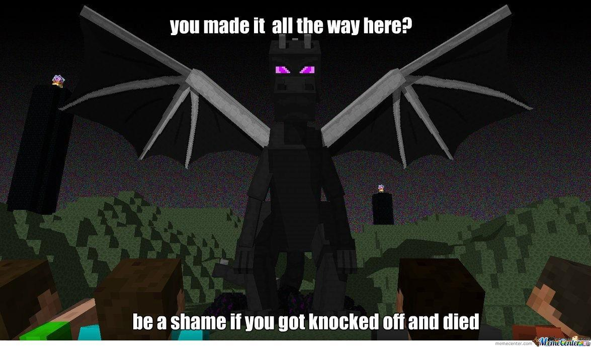 It's time to slay the Enderdragon! What do you bring?