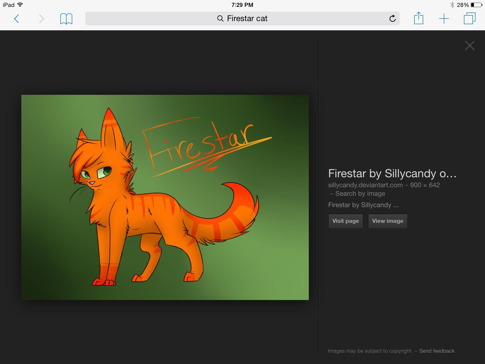 What is Firestar's kitty pet name?