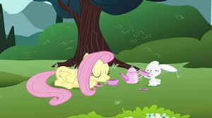 Fluttershy : Would you care for a Tea Party?