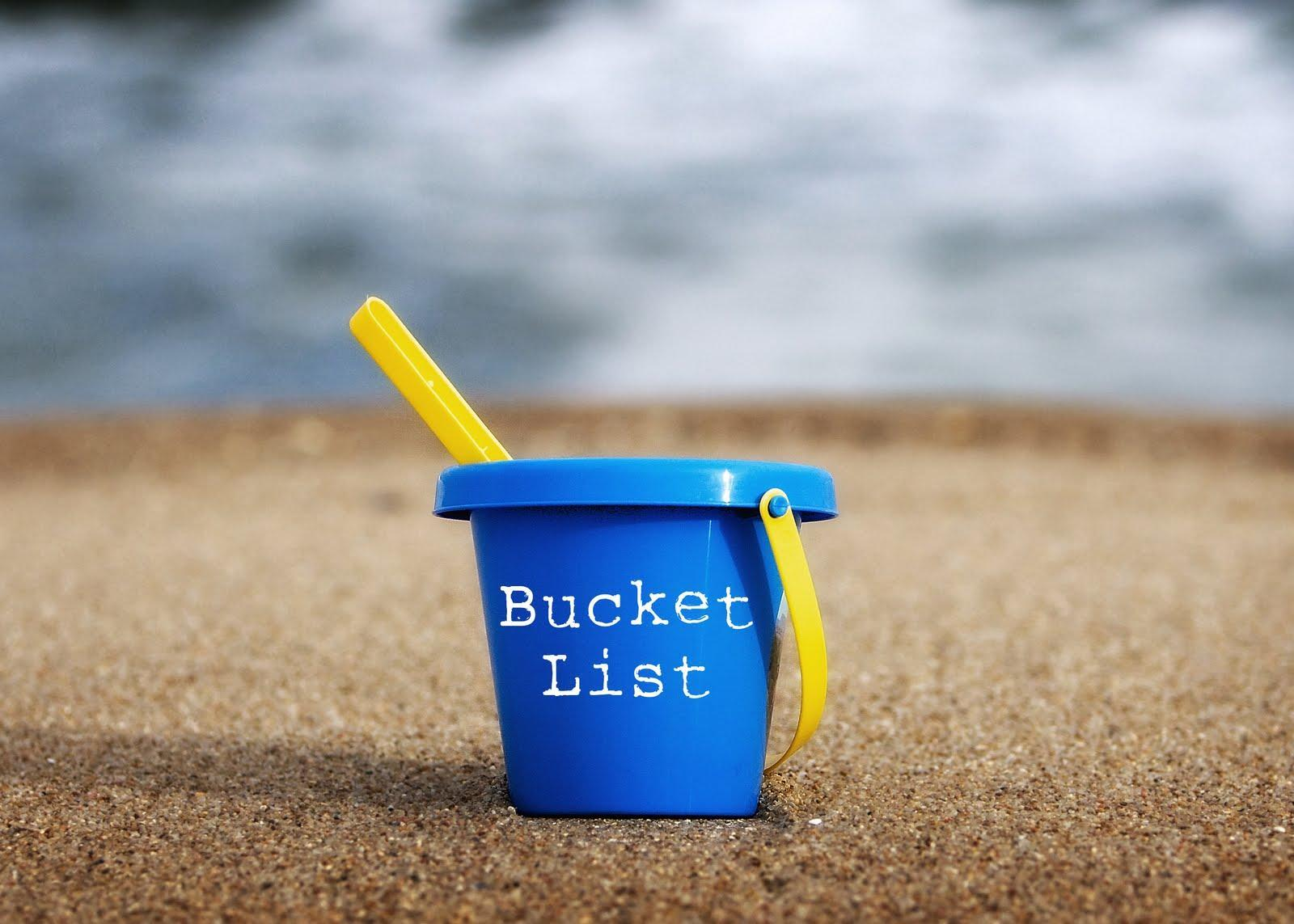 What would you like to have done at the end of your bucket list?