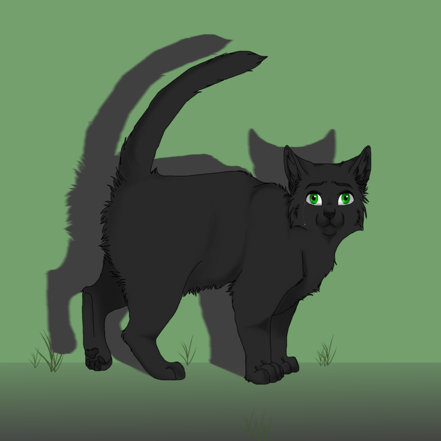 Who was Hollyleaf's mentor?