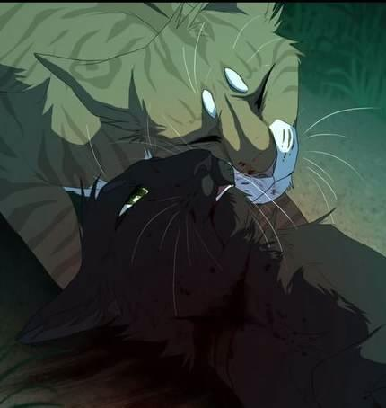 Do you think Hollyleaf truly loves her mother?