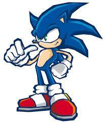 When you wake up, you are on the ground, in a place who are not familiar to you. You see a blue hedgehog approaching you by running very fast. < You: He tells me something... > < The hedgehog : Hi! My name is Sonic, who are you? >