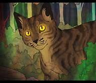 How many half-brothers does Brambleclaw have