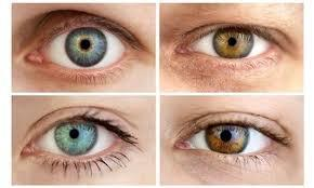 What Eye Color Do You Find More Appealing For Your Lover?