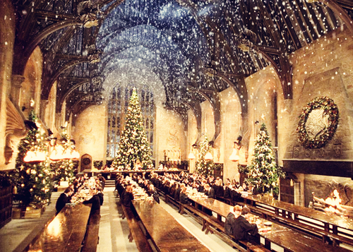 What are you most looking forward to at 'Hogwarts School Of Witchcraft and Wizardry'?...