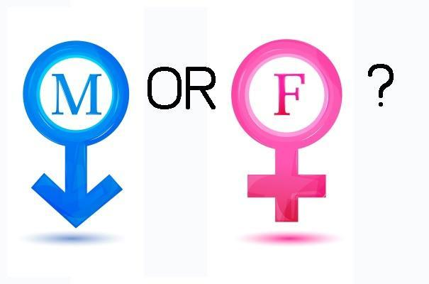 Am I male or female?