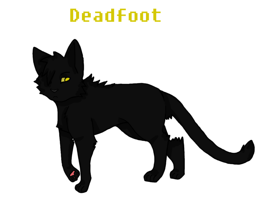 What cat did Deadfoot chose to go to Sun- Drown place?