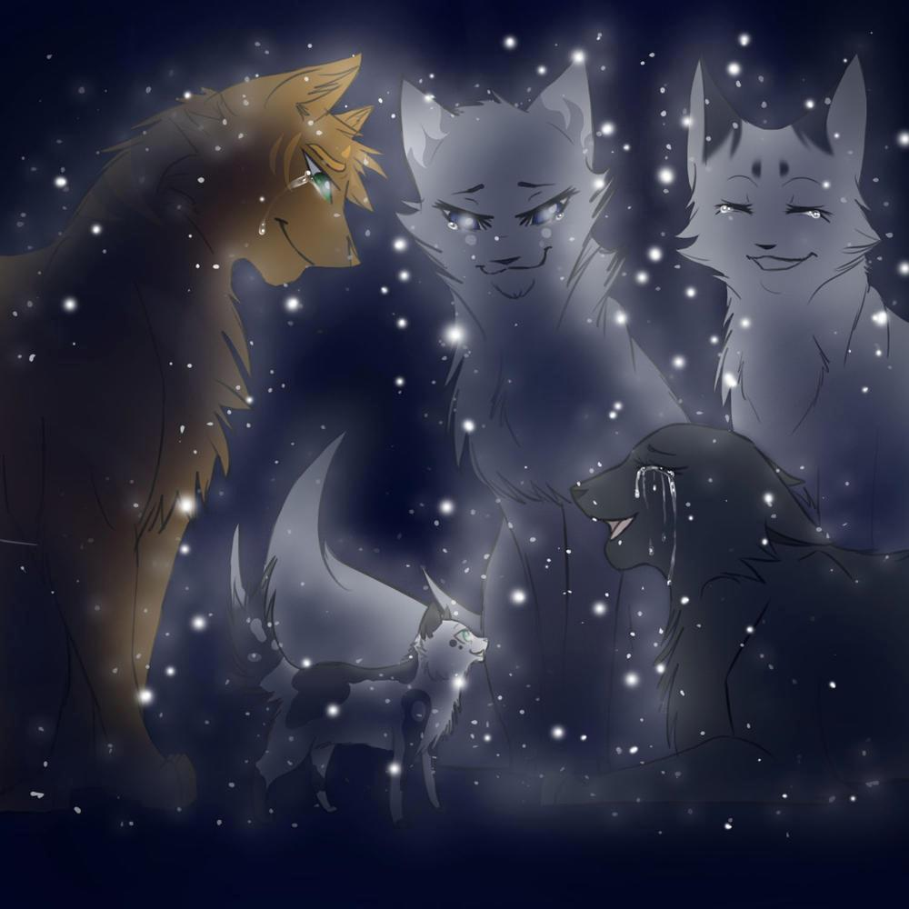 Do you believe in Starclan?
