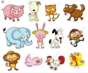 What animal group is your favourite?
