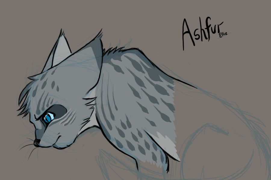 What things are true about Ashfur?