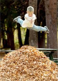 you make a pile of leaves at the park and some other kids jump in the pile before you can what do you do.