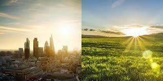 Would you rather live in town or in the countryside?