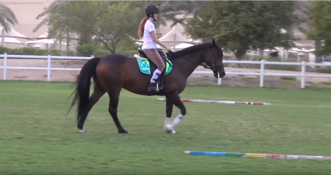 The instructor made a mistake  by making a sound with her noise. The mare started to trot. Making her body go up and down under the saddle.  What would you do?